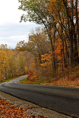 Photograph - Autumn Road Trip 2 by Shawna Rowe