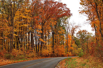 Photograph - Autumn Road Trip by Shawna Rowe