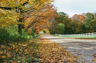 Photograph - Autumn Road With Fence  by John McGraw