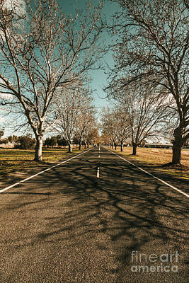 Asphalt Photograph - Autumn Roads And Leafless Trees by Jorgo Photography - Wall Art Gallery