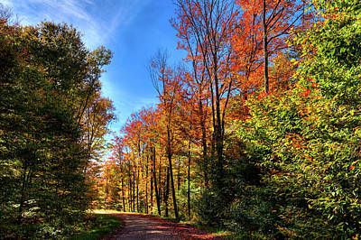 Photograph - Autumn Roads by David Patterson