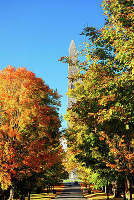 Photograph - Autumn Roads by James Kirkikis