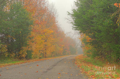 Art Print featuring the photograph Autumn Roads by Wanda Krack