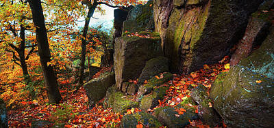 Photograph - Autumn Rocky Forest Panorama by Jenny Rainbow