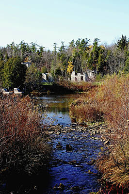 Photograph - Autumn Ruins by Debbie Oppermann