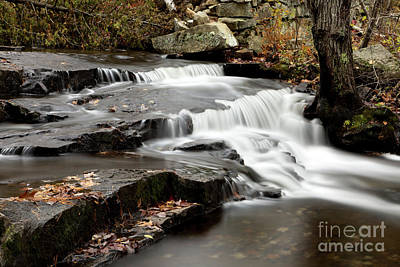 Photograph - Autumn Rush by Karin Pinkham