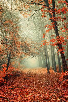 Photograph - Autumn Rust by Jenny Rainbow