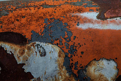 Photograph - Autumn Rust by Toni Hopper