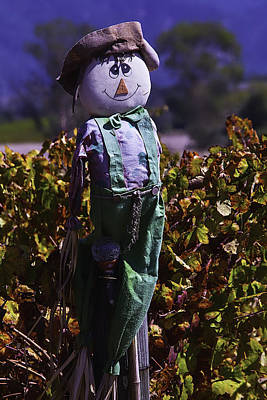 Grape Leaves Photograph - Autumn Scarecrow by Garry Gay