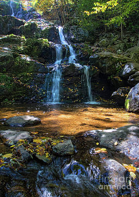 Photograph - Autumn Scene, Dark Hollow Falls, Snp, Va -74163-74164 by John Bald