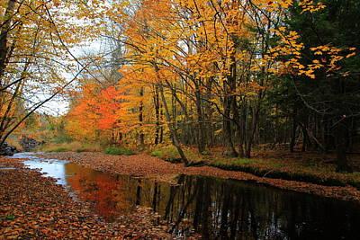 Photograph - Autumn Scene - Nova Scotia Landscape by Kathleen Sartoris