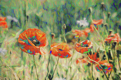 Painting - Autumn Scene Of Poppies 116 - Painting by Ericamaxine Price