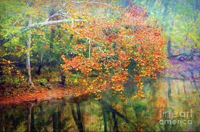 Photograph - Autumn Scenery  by Kerri Farley - New River Nature