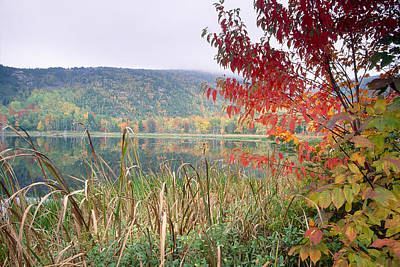 Autumn Scenic Acadia National Park Maine Art Print by George Oze