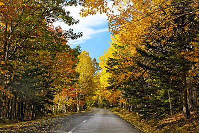 Autumn Scenic Drive Art Print by George Oze