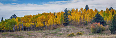 James Insogna Photograph - Autumn Season Aspen Panorama Scenic View by James BO  Insogna
