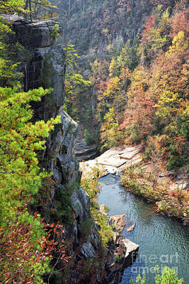 Photograph - Autumn Season Landscape Of Hawthorne Pool At Tallulah Gorge by Vizual Studio