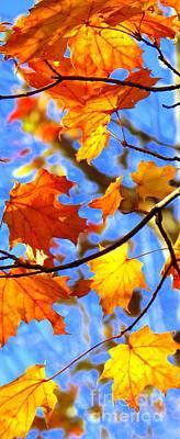 Photograph - Autumn Secret Gift by France Laliberte