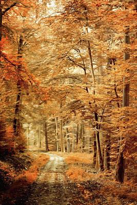 Photograph - Autumn Secret by Philippe Sainte-Laudy