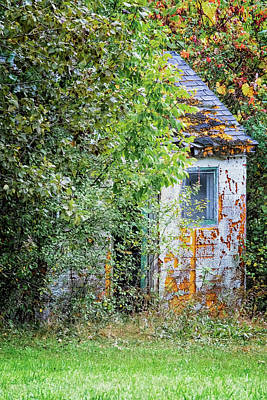 Photograph - Autumn Shack by Tom Singleton