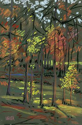 Autumn Shadows Art Print by Donald Maier
