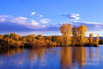 Photograph - Autumn Shimmering by Barbara Schultheis