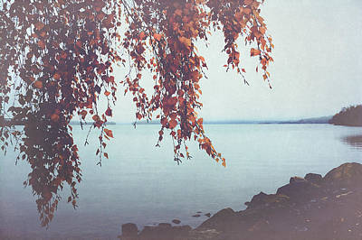 Print featuring the photograph Autumn Shore by Ari Salmela