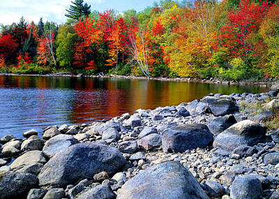 Photograph - Autumn Shoreline by Frank Houck