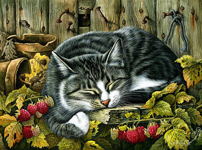Tabby Cat Photograph - Autumn Siesta by Irina Garmashova-Cawton