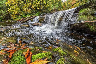 Photograph - Autumn Silks by Debra and Dave Vanderlaan