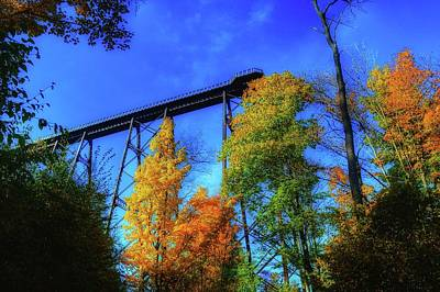 Kinzua Photograph - Autumn Skywalk View by Shelley Smith
