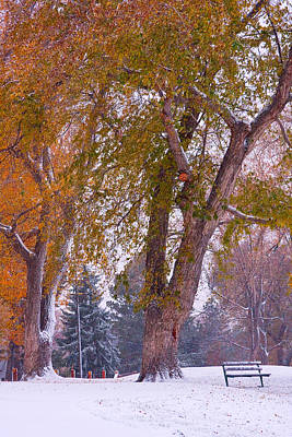 Colorful Art Photograph - Autumn Snow Park Bench   by James BO  Insogna