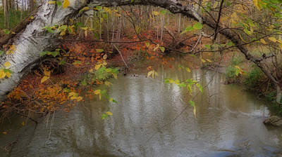 Photograph - Autumn Solitude by Kay Novy