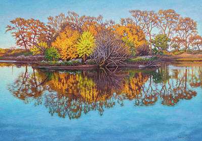 Chicago Reflections Painting - Autumn South Pond by Fiona Craig