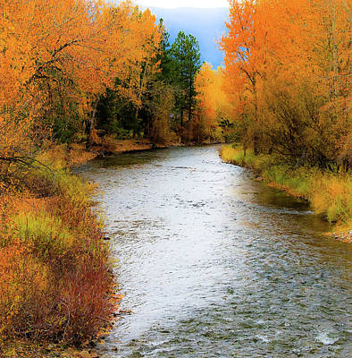 Photograph - Autumn Splendor by Athena Mckinzie