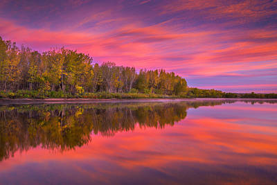 Photograph - Autumn Splendor by Darren White