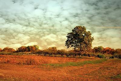 Freehold Photograph - Autumn Splendor In The Orchard - Battlefield Orchards by Angie Tirado