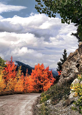 Autumn Splendor Art Print