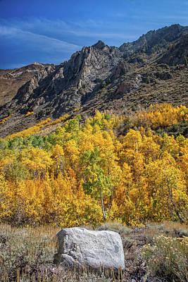Photograph - Autumn Splendor by Lynn Bauer