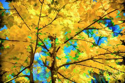 Photograph - Autumn Splendor by Rick Bragan