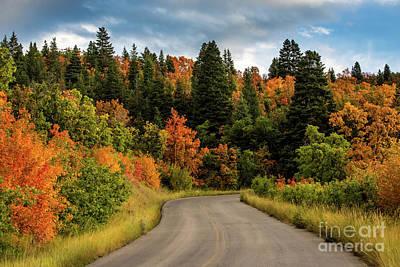 Photograph - Autumn - Squaw Peak Road - Cascade Meadow by Gary Whitton