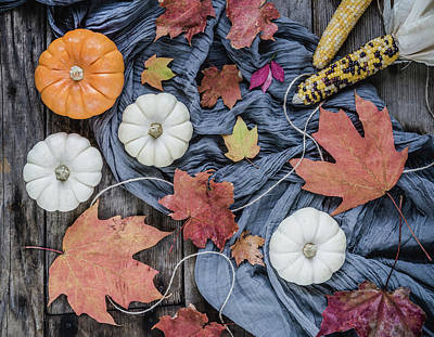 Photograph - Autumn Still Life by Kim Hojnacki