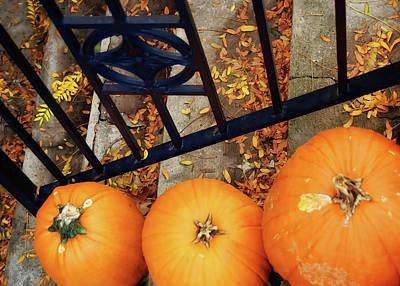 Photograph - Autumn Stoop by JAMART Photography