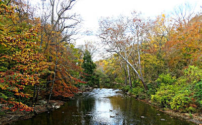 Photograph - Autumn Stream 2 by Brenda Conrad