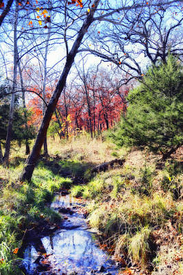Photograph - Autumn Stream  by Ann Powell