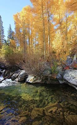 Photograph - Autumn Stream Dreams by Sean Sarsfield