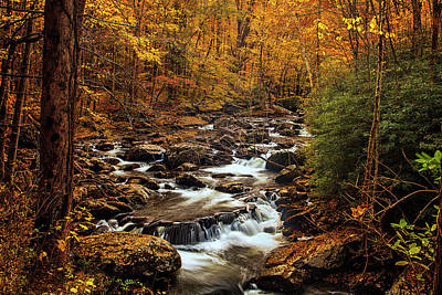 Photograph - Autumn Stream In The Smokies by Andrew Soundarajan