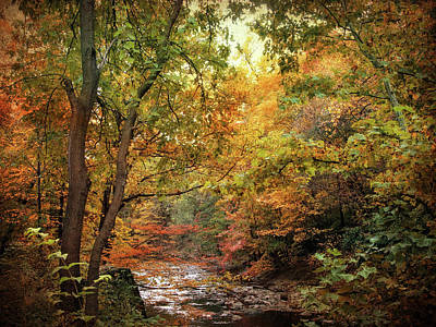 Fall Foliage New York Wall Art - Photograph - Autumn Stream by Jessica Jenney