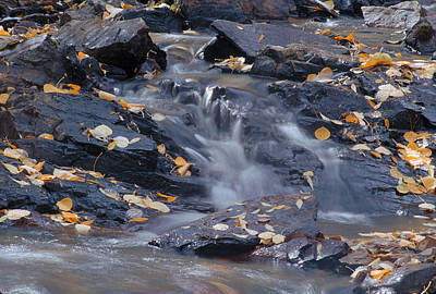 Photograph - Autumn Stream by John Farley
