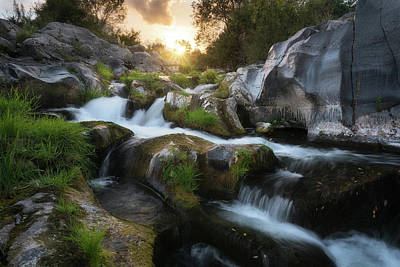 Photograph - Autumn stream by Marco Calandra